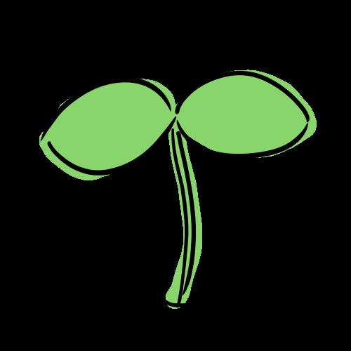 植物の芽のイラスト無料素材