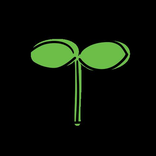 芽の無料イラスト素材